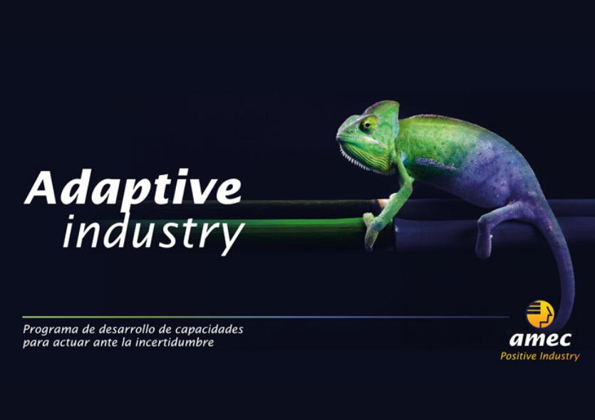 Programa Adaptive Industry